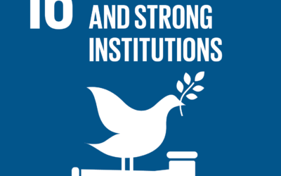 UNESCO: Overview Report on SDG 16.10.2 Data Exercise